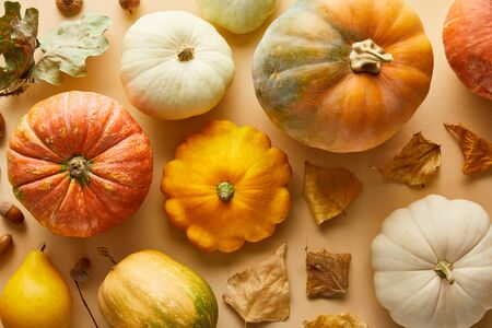 top view of ripe whole pumpkins with dry golden foliage on beige background