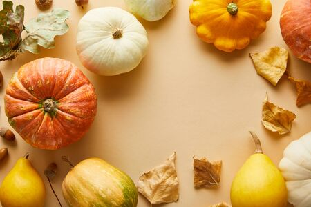 top view of ripe whole pumpkins with dry golden foliage on beige background with copy space