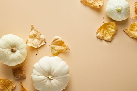 top view of ripe whole white pumpkins with dry golden foliage on beige background Stockfoto
