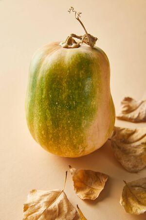 ripe whole pumpkin with dry golden foliage on beige background
