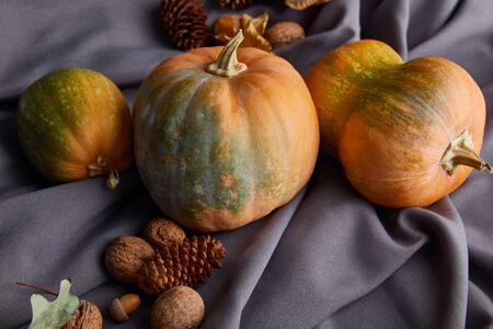 ripe whole colorful pumpkins with autumnal decoration on grey cloth Zdjęcie Seryjne