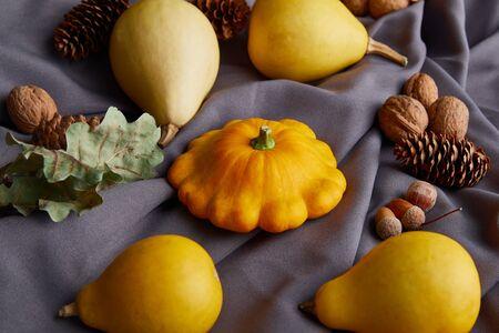 ripe whole colorful pumpkins and autumnal decor on grey cloth Zdjęcie Seryjne