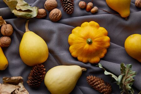 ripe whole colorful pumpkins, nuts and cones on grey cloth
