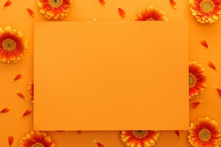top view of gerbera flowers and empty card on orange background