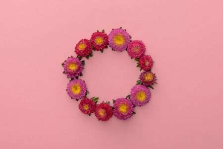 wreath of purple asters on pink background with copy space