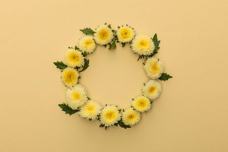 round frame of yellow asters on beige background with copy space