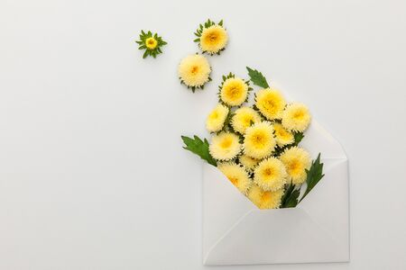 top view of yellow asters in envelope on white background