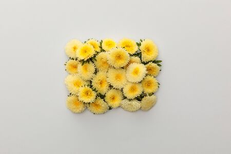 top view of yellow asters on white background with copy space