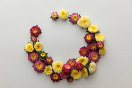 wreath of yellow and purple asters on white background with copy space 版權商用圖片 - 133650246