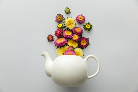 top view of asters above teapot on white background 版權商用圖片 - 133650254