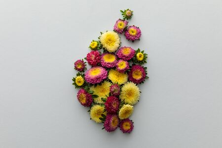 top view of yellow and purple asters on white background 版權商用圖片 - 133650260
