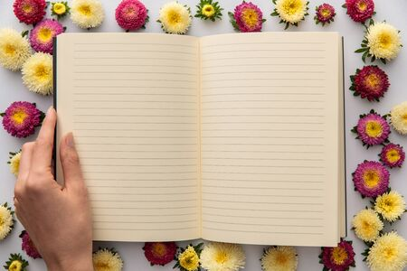 cropped view of woman holding blank notebook near yellow and purple asters on white background