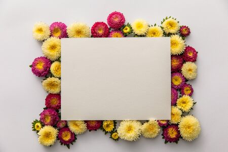 top view of yellow and purple asters and blank paper on white background