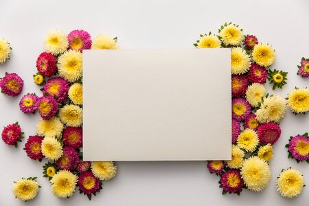 top view of yellow and purple daisy flowers with blank paper on white background