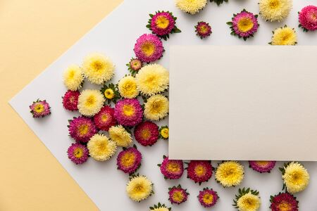 top view of yellow and purple daisy flowers with blank paper on white and yellow background