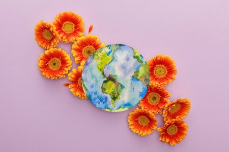 top view of orange gerbera flowers and painted planet Earth on violet background