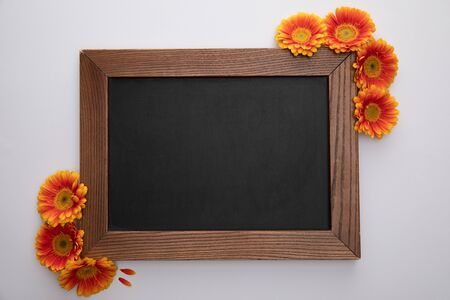 top view of orange gerbera flowers and blank chalkboard on white background