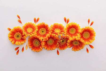 top view of orange gerbera flowers with petals on white background