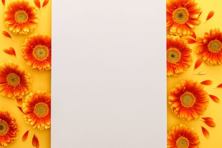 top view of orange gerbera flowers with blank paper on orange background