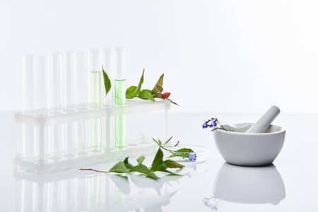 glass test tubes, mortar with pestle near plants isolated on white