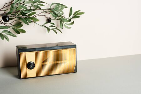 Vintage radio with olive branch on white background