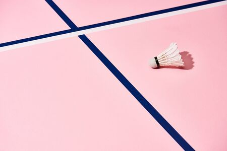 Shuttlecock for badminton on pink surface with blue and white lines