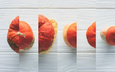 collage of ripe orange natural pumpkin on white wooden table