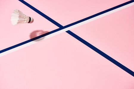 Badminton shuttlecock on pink surface with blue lines