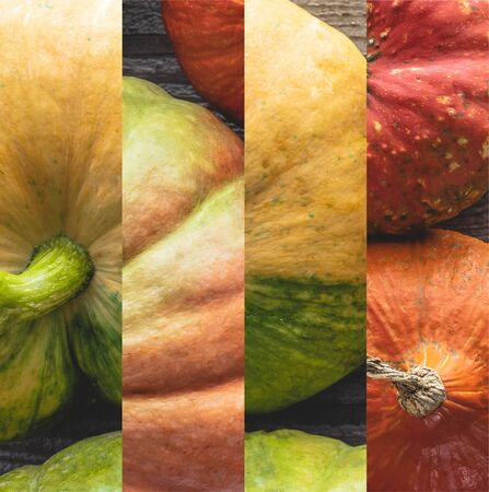 collage of ripe orange and green natural pumpkin on wooden table