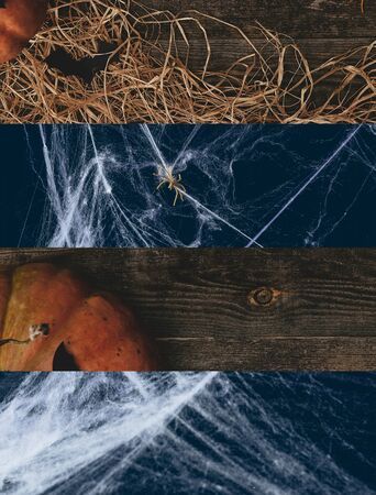 collage of spiderweb and traditional Halloween pumpkin