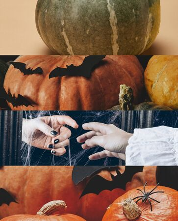 collage of traditional Halloween pumpkins with decorative bats and people hands Reklamní fotografie