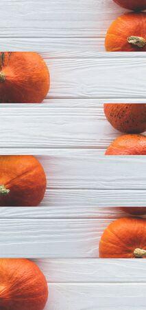 collage of ripe orange natural pumpkin on white wooden surface Reklamní fotografie