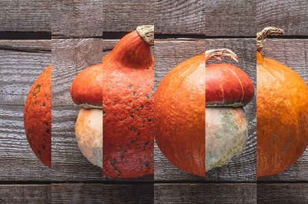 collage of ripe orange natural pumpkin on wooden table