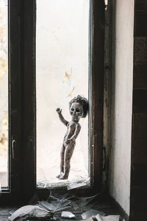 burnt baby doll near broken window and glass, post apocalyptic concept