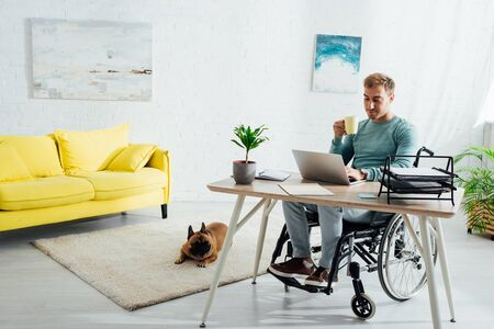 Disabled man with laptop and cup and french bulldog in living room