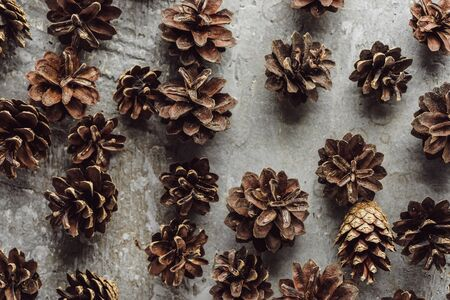 top view of dry spruce cones scattered on grey stone surface