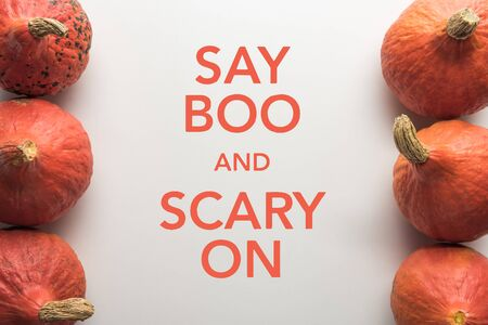 top view of ripe pumpkins in rows on white background with say boo and scary on illustration