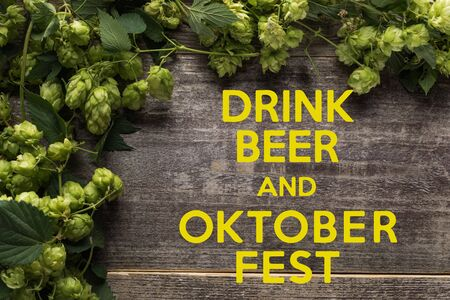 top view of green blooming hop on wooden table with drink beer and Oktoberfest lettering