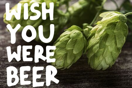 close up view of green hop on wooden table with wish you were beer illustration