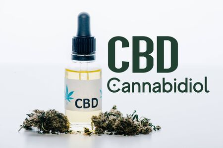 cbd oil in bottle near medical marijuana buds isolated on white with cbd illustration