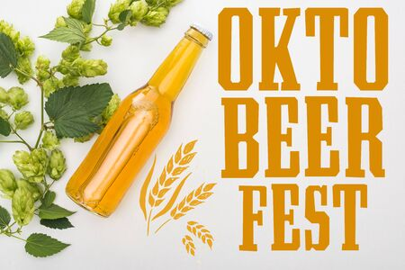 top view of beer in bottle with green blooming hop on white background with Oktoberfest lettering 版權商用圖片