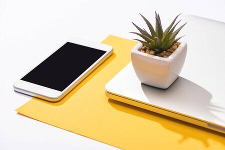 vista de ángulo alta, de, teléfono inteligente, computadora portátil, planta y papel