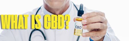 panoramic shot of doctor in white coat holding cbd oil extract in bottle isolated on white with what is CBD question