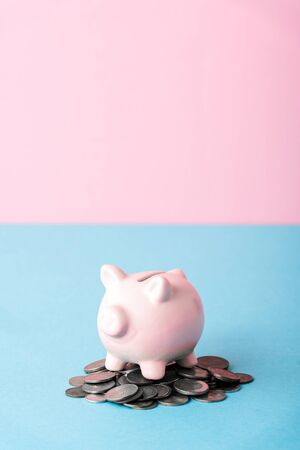 silver coins near piggy bank on blue and pink
