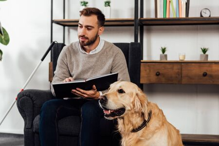 Selective focus of golden retriever sitting beside blind man reading book at home