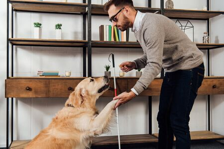 Side view of blind man holding bagel while training golden retriever at home