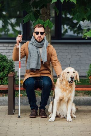 Blind man with walking stick sitting on bench beside guide dog