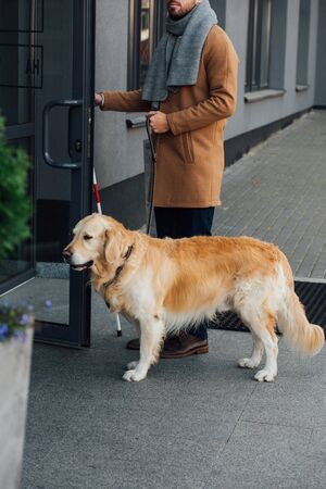 Cropped view of blind man with guide dog and walking stick opening door of building Stockfoto
