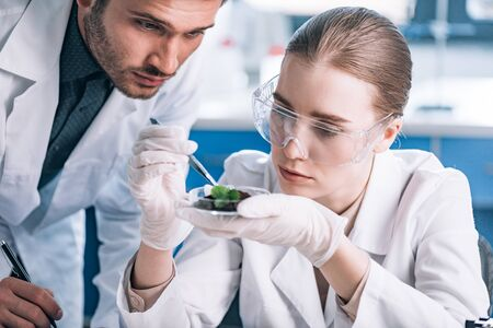 biochemist in goggles holding tweezers near green plant and coworker