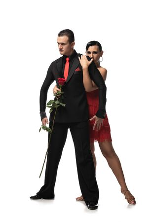 sensual, beautiful dancer hugging partner holding red rose while performing tango on white background Фото со стока